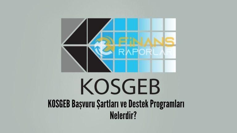 KOSGEB Başvuru Şartları ve Destek Programları